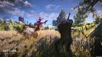 Witcher 3: Wild Hunt, The: 75871_DtkdrxqZuD_image_the_witcher_3_wild_hunt_25.jpg