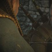 Witcher 3: Wild Hunt, The: bandicam 2014-06-11 02-07-24-386.jpg